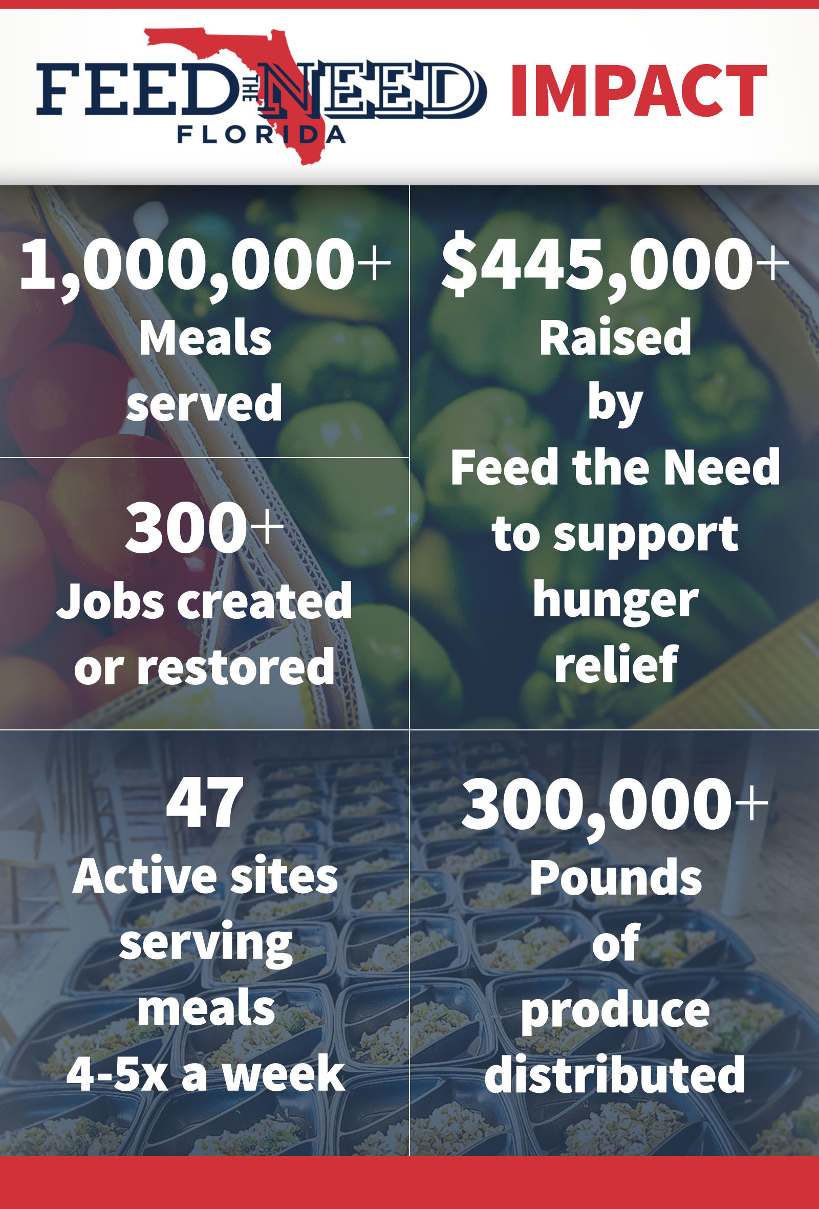 Feed the Need Impact