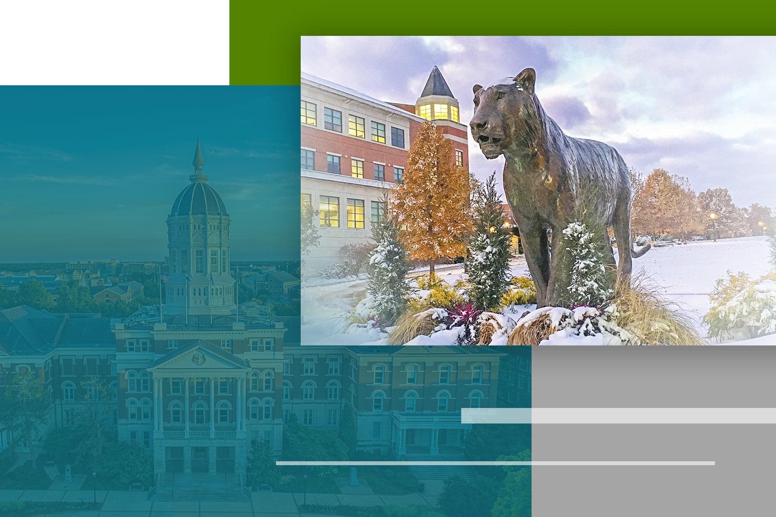 University of Missouri - Vasey Academy